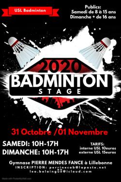 Stage badminton vacances Toussaint